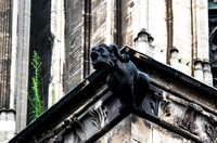 Gargoyle, Cologne Cathedral, Cologne, Germany